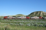  BNSF 8249  8293  and  8287